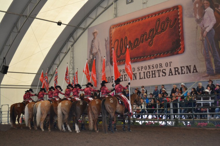 The Calgary Stampede showriders.