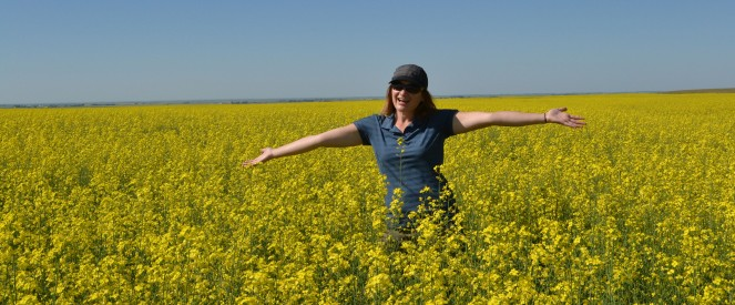 Standing in a sea of yellow - canola.