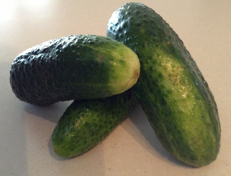 Cucumbers. Mix some fresh cut up cucs with sour cream and a bit of salt and pepper and you have a healthy, tasty snack.