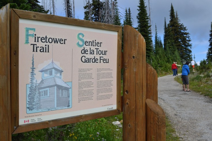 The Firetower trail at the summit.