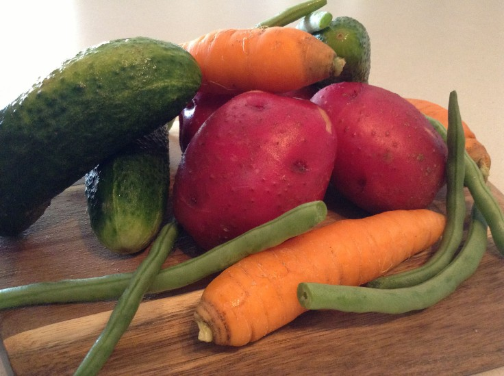Tasty produce from my mom's garden on our family farm. I love fresh veggies in the summer!