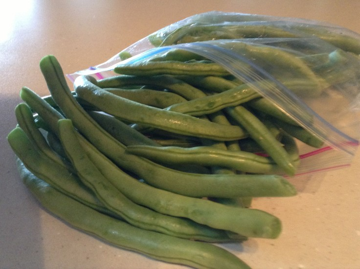 Fresh green beans from the garden... nothing compares!