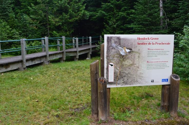 Hemlock Grove trail.