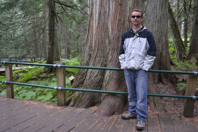 Keith in front of a huge red cedar.