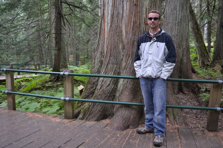 Keith in front of a huge red cedar.