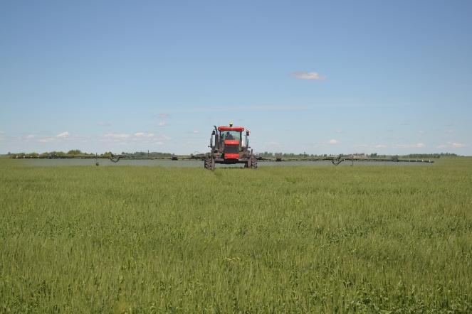 A sprayer in a field.