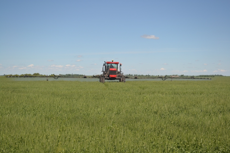 A sprayer in a field.