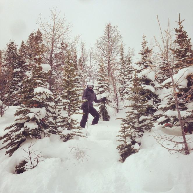 Sunshine_skiing05