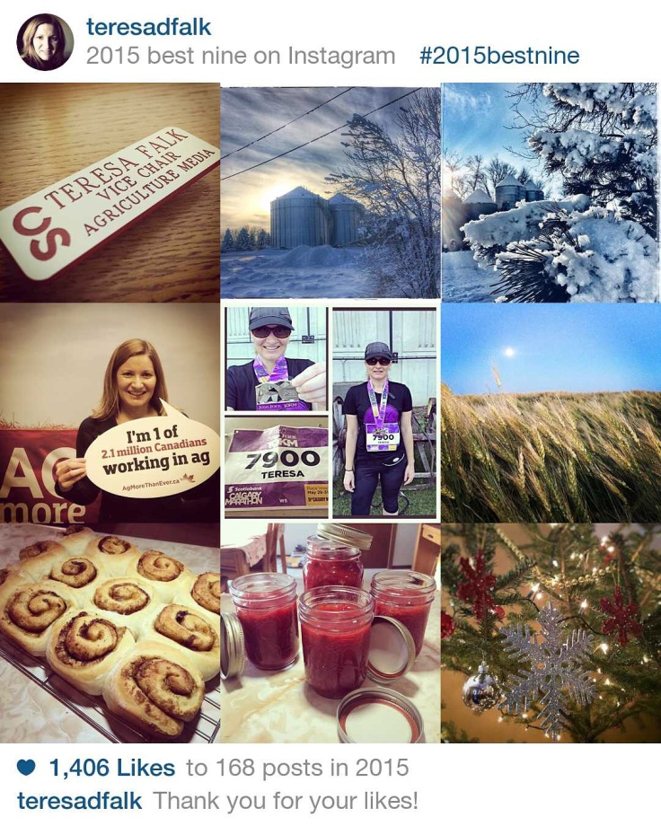 Instagram Best Nine Pics 2015
